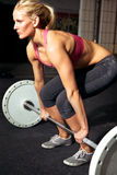 Séance d'entraînement femelle de forme physique Image libre de droits