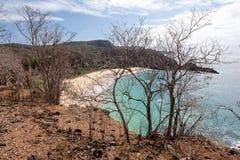 Sancho海滩费尔南多・迪诺罗尼亚群岛海岛 免版税库存照片