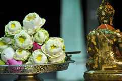 Sanctity Lotus and buddha statue. Sanctity Lotus was dedicated in front of the statuethe buddha statue,in bangkok,Thailand Stock Photos
