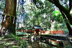 Sanctuary in the temple, Japan royalty free stock photo