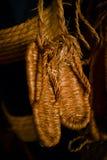 Sandálias de Zori Imagem de Stock