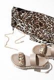 Sandálias e caneleiras do ` s das mulheres Imagens de Stock