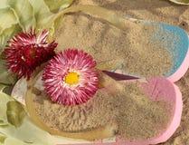 Sandálias na areia na praia Imagens de Stock Royalty Free