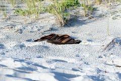 Sandálias na praia fotos de stock