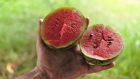 Sandías dulces pequeñas de Sri Lanka pero exóticas famosas foto de archivo
