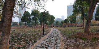 Sand湖公园在武汉 免版税库存照片