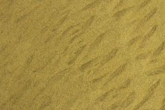 Sand. Picture of flat sand with some bigger and smaller grains royalty free stock photography