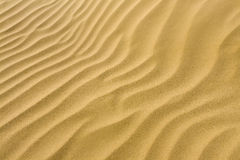 Sand. Details of the signs of the wind on the sand Royalty Free Stock Photography