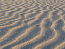 Sand. Beach sand stock photos