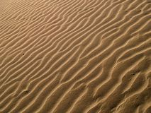 Sand. Texture Stock Photography