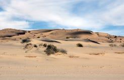 Free Sand Art Along The Sea Of Cortez, El Golfo De Santa Clara, Sonora, Mexico Royalty Free Stock Photography - 107269527