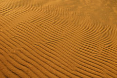 Sand background royalty free stock photo