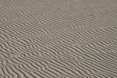 Sand background. Regular pattern of grey sand waves Royalty Free Stock Photo