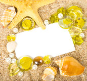 Sand background with exotic shell. Beautiful sand background with exotic shell Stock Photo