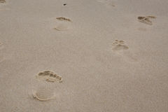 Sand background with footprints on the beach Royalty Free Stock Photo