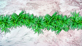 Sand  background and grass border Royalty Free Stock Photos