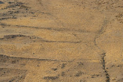 Sand background light reddish brown. Desert. dry earth and stones Stock Photography