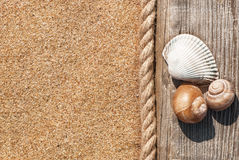 Sand background with old wood, seashells and rope Royalty Free Stock Images