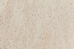 Sand background. Sea sand background and textured Stock Photography