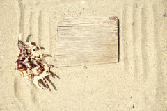 Sand background  and shell on the beach. Sand background with wooden plate and shell on the beach Royalty Free Stock Photo