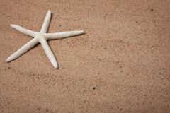 Sand background with a starfish Stock Photo