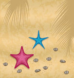 Sand background with starfishes and pebble stones Royalty Free Stock Photo