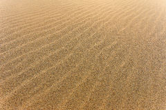 Sand background template. Sand textured beach Stock Image