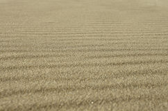 Sand background texture Stock Photography