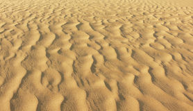 Sand background texture Stock Image