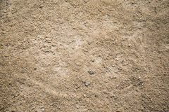 Sand background and texture. A sand background and texture Stock Images