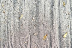 Sand background texture with dry fall leaves ,rough. And ridge texture Royalty Free Stock Photo
