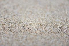 Sand background texture with shallow depth of field Stock Images