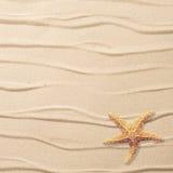 Sand Background Royalty Free Stock Photos