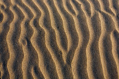Sand background. Stock Photography