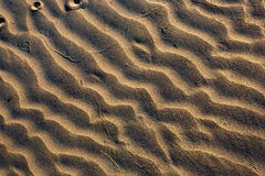 Sand background. Stock Photos