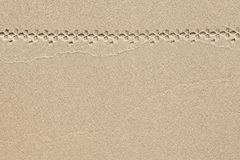 Sand background with track of bicycle Royalty Free Stock Images