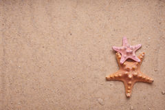 Sand Background with Two Starfish Royalty Free Stock Image