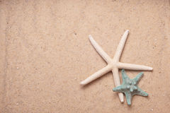 Sand Background with two starfish Stock Image