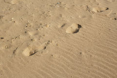 Sand background with wavelike patterns, footprints and seashells Royalty Free Stock Images