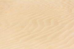 Sand background. Yellow white textured beach desert empty sand background Royalty Free Stock Photos