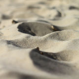 Sand on beach Royalty Free Stock Image
