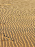 Sand on beach Royalty Free Stock Photos