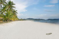 Sand beach. Palm trees and white sand beach Royalty Free Stock Images