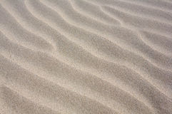Sand in the beach Stock Photography