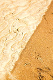 Sand in the beach abstract thailand pink     south china sea. Sand and the beach abstract thailand kho tao bay of a  wet  in  south china sea Royalty Free Stock Photos