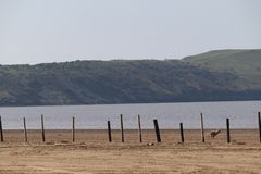 Empty beach scenery Weston-super-Mare. Sand and beach area empty on Weston-super-Mare beach royalty free stock images