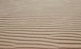 Sand on the beach as a background or texture - Sand pattern for. Med by the wind royalty free stock photos
