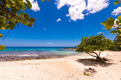 Sand beach in Bayahibe, La Altagracia, Dominican Republic. Copy space for text. Stock Photos