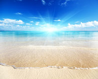 Sand of beach caribbean sea Royalty Free Stock Photography