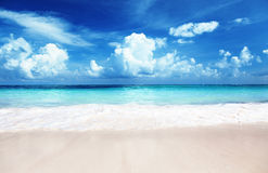 Sand of beach caribbean sea Royalty Free Stock Images